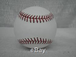 Goose Gossage Signed New York Yankees Stadium Baseball Steiner Sports